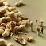 Miniaturen im Essen