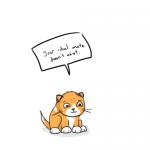 Harte Wahrheiten von süßen Kätzchen